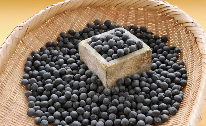 Tamba black soybean