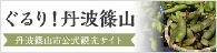 Tamba Sasayama-shi sightseeing information